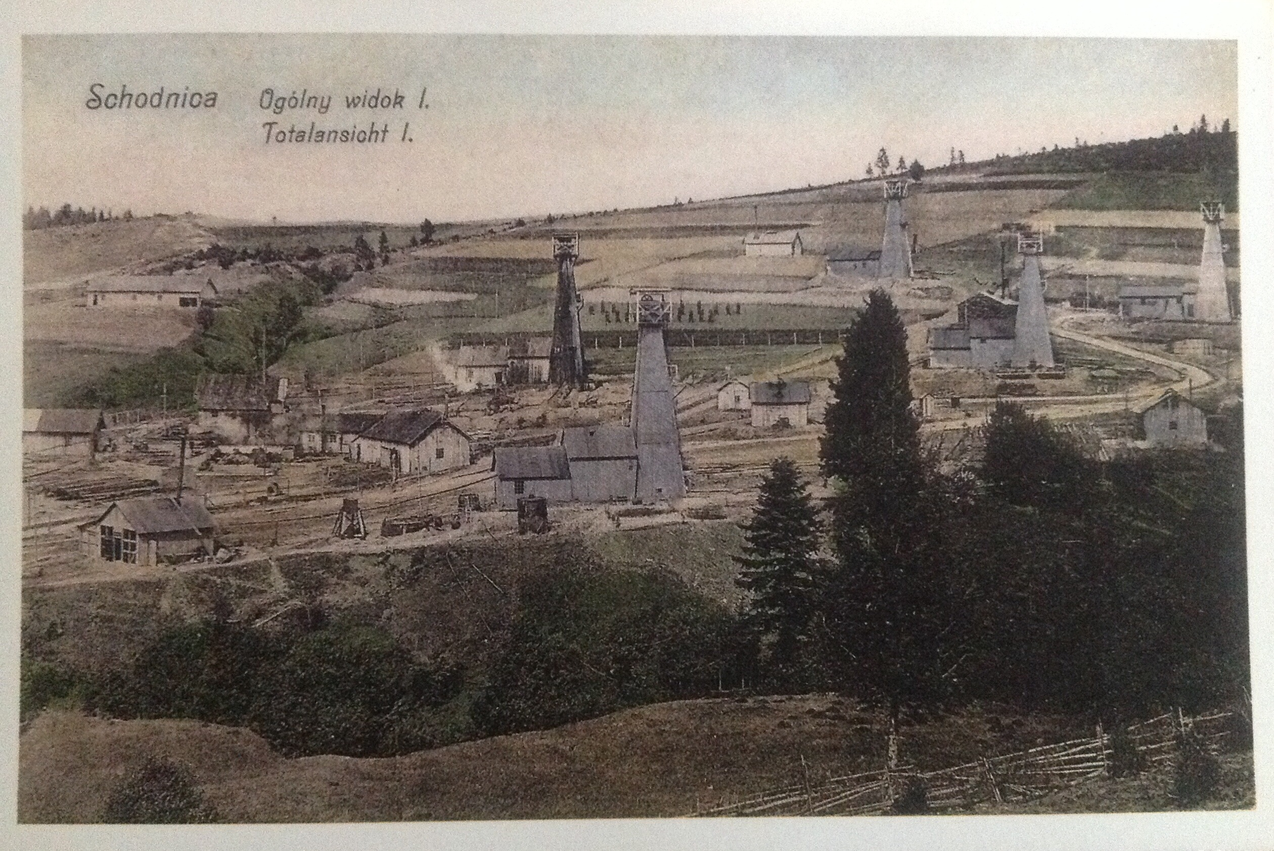 Shidnytsya, general view, 19th cen
